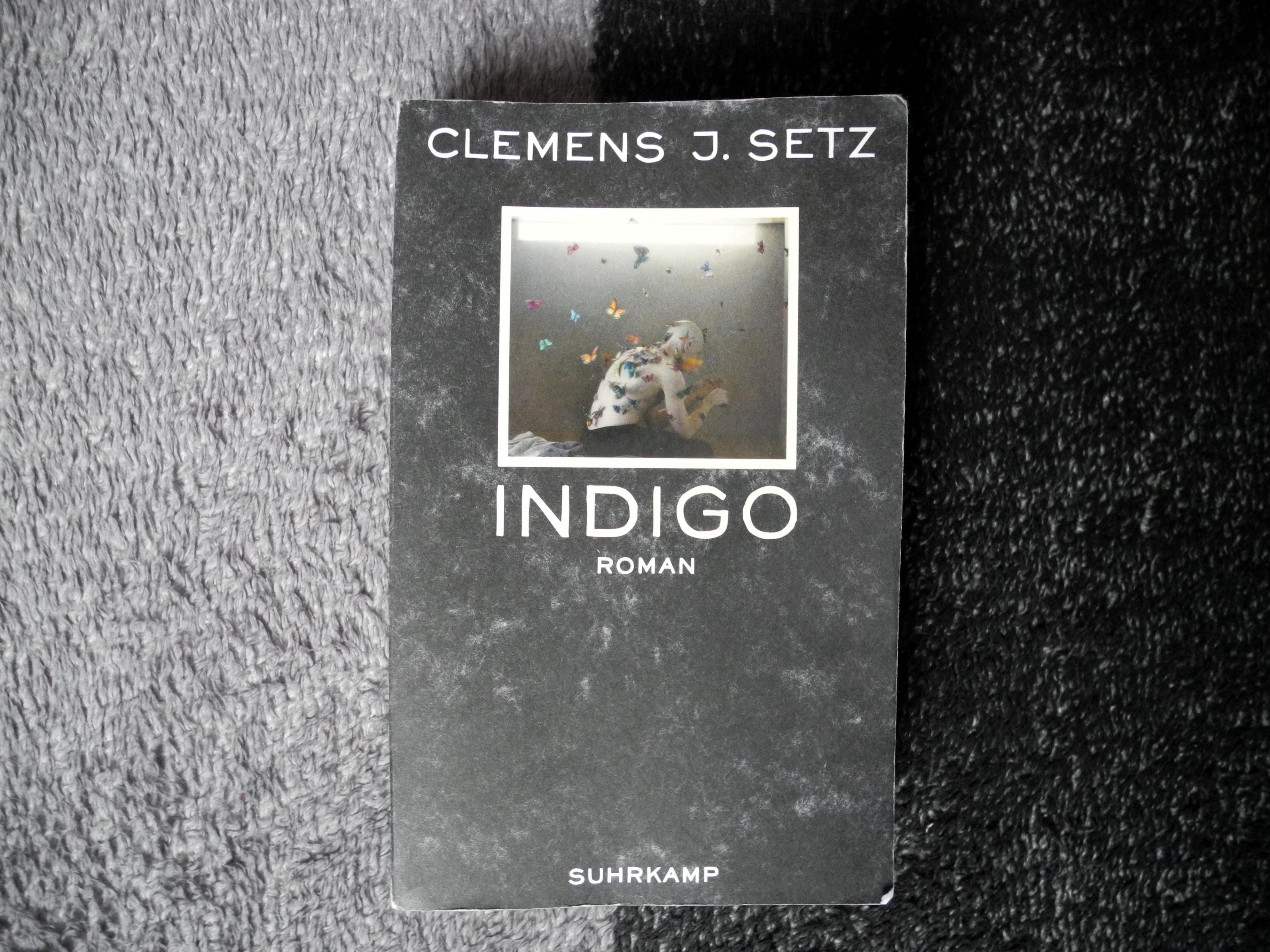 Clemens Setz Indigo
