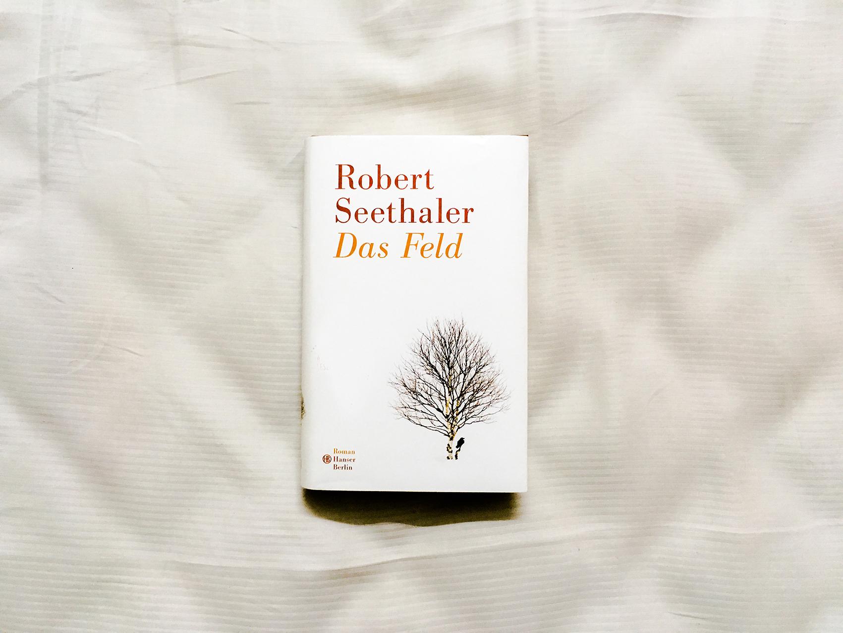 Rober Seethaler: Das Feld