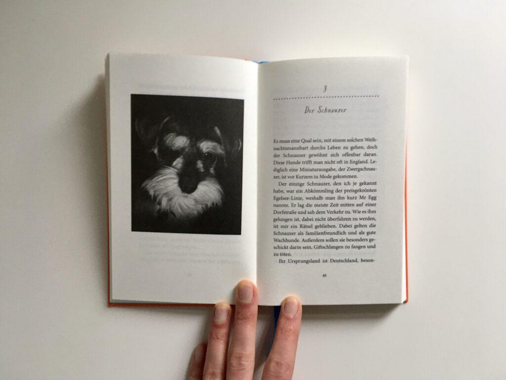 Doppelseite aus dem Buch »Gesichter – Portraits einiger Hunde« von Vita Sacjville-West und Laelia Goehr